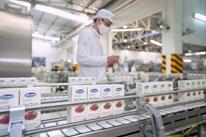 Chìa khóa thành công của Vinamilk trên thị trường xuất khẩu