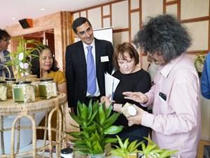 USAID hoàn thành dự án Trường Sơn Xanh tại Quảng Nam và Thừa Thiên-Huế