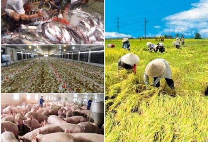 Sản xuất nông nghiệp, thủy sản giữ được đà phục hồi