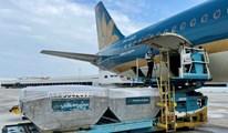 10 tấn vải thiều đầu tiên được xuất sang Nhật Bản bằng máy bay