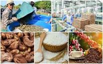 Xuất khẩu nông nghiệp cả năm khả năng có thể đạt 44 tỷ USD
