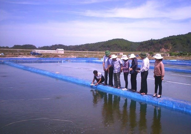 Vietnamese hard clams become world first to win ASC certificate